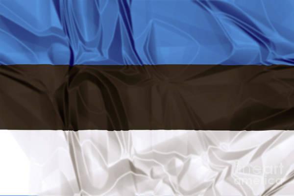 Digital Art - Flag Of Estonia by Benny Marty