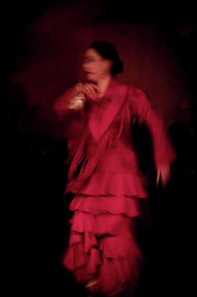 Photograph - Flamenco 35 by Catherine Sobredo