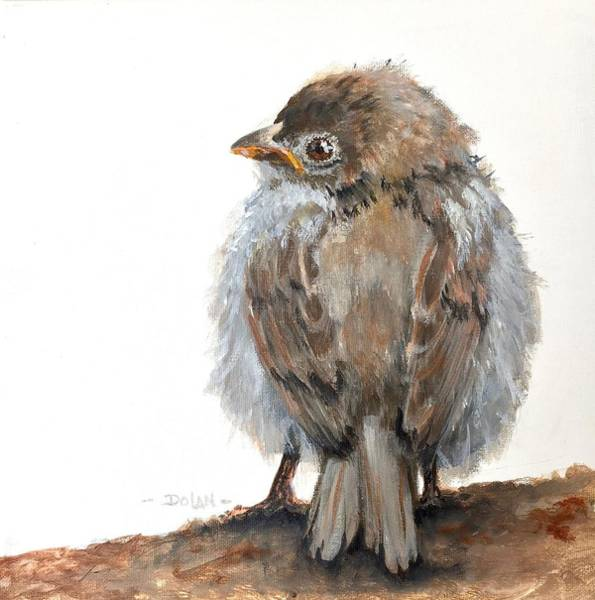 Painting - Fledgling Sparrow by Pat Dolan