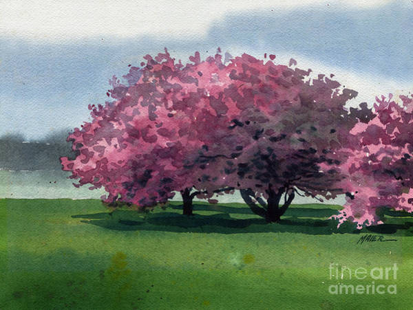 Cherry Tree Painting - Flowering Trees by Donald Maier