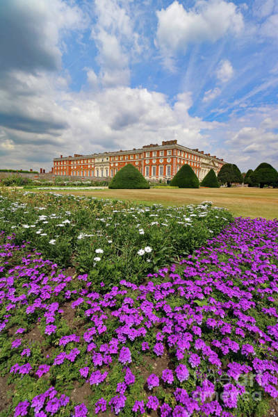 Photograph - Flowers At Hampton Court Palace London  by Julia Gavin