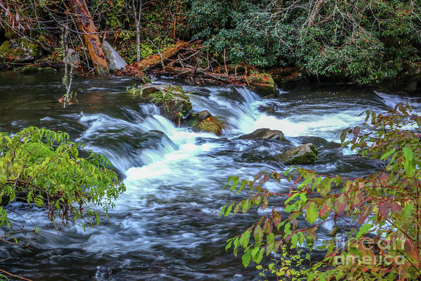 Photograph - Flowing Mountain Stream by Tom Claud