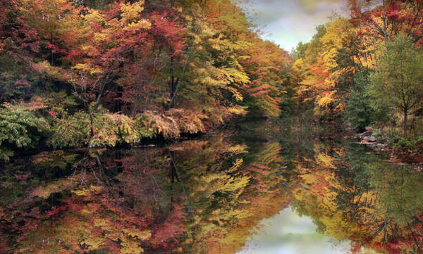 Photograph - Foliage Reflections by Jessica Jenney