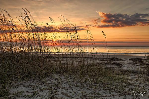 Hilton Head Island Photograph - Folly Field Morning by Phill Doherty