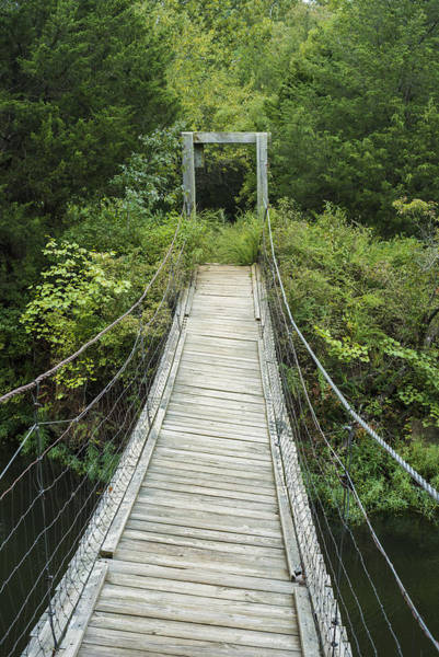 Photograph - Foot Bridge by Robert Potts