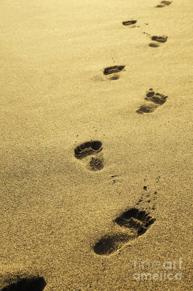 Footstep Wall Art - Photograph - Footprints In The Sand by Jelena Jovanovic