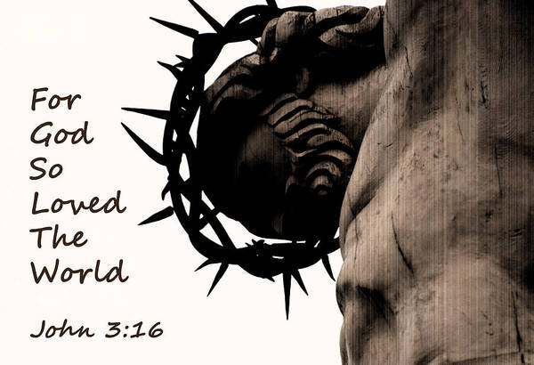 Photograph - John 3 16 For God So Loved The World by Jani Freimann