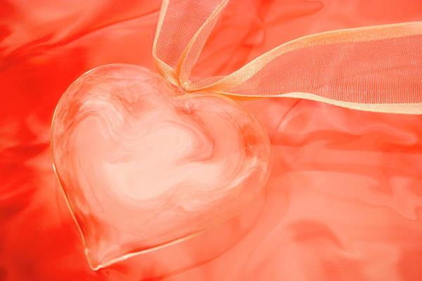 Wall Art - Photograph - Fragile Heart Valentine's Day Card by Carol Leigh