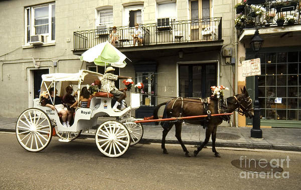 Photograph - French Quarter New Orleans by Thomas R Fletcher