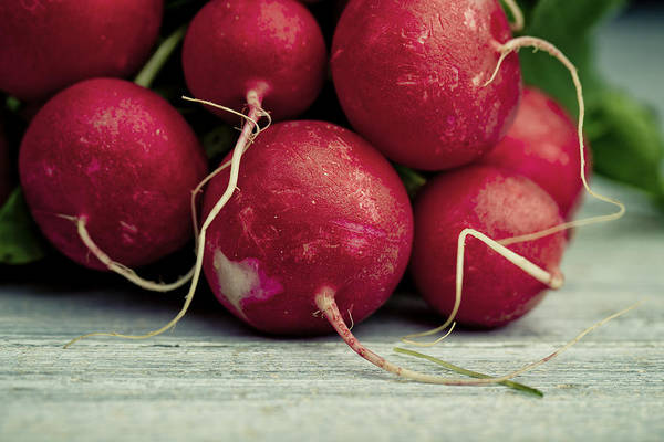 Red Green Photograph - Fresh Radish by Nailia Schwarz