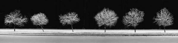 Photograph - Frost Line by Ed Boudreau