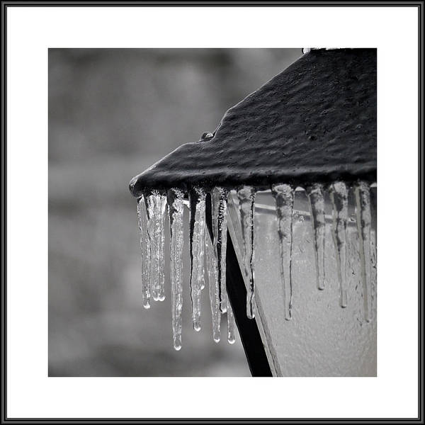 Photograph - Galley Image - Winter by Richard Reeve