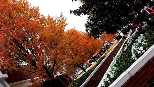 Photograph - Gameday Fall Colors by Kenny Glover