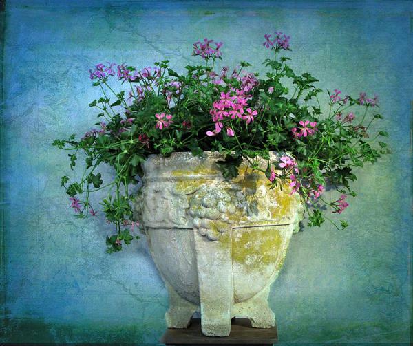 Urn Photograph - Garden Planter by Jessica Jenney