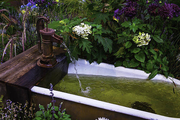 Trough Wall Art - Photograph - Garden Water Pump by Garry Gay