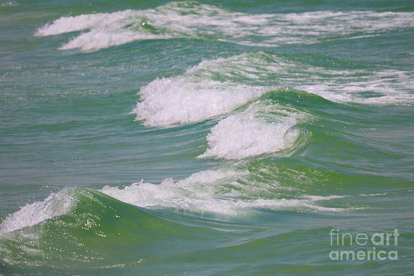 Photograph - Gentle Gulf Waves by Carol Groenen