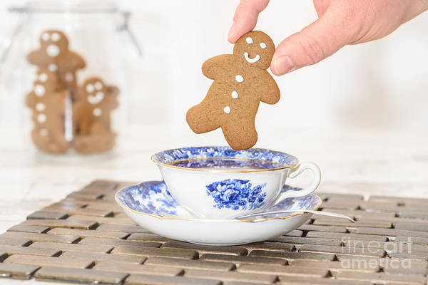 Saucer Photograph - Gingerbread In Teacup by Amanda Elwell