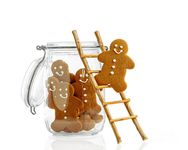 Ladders Photograph - Gingerbread Men by Amanda Elwell