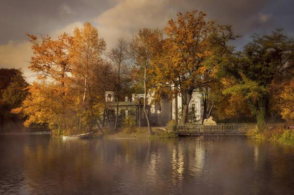 Wall Art - Photograph - Golden Leaves  by Jaroslaw Blaminsky