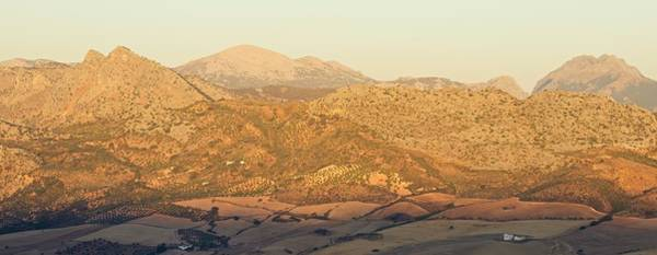 Photograph - Golden Light In Andalusia by Stephen Taylor