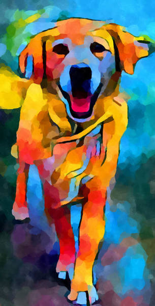 Wall Art - Painting - Golden Retriever 3 by Chris Butler