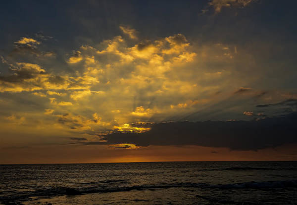 Photograph - Golden Sky by Pamela Walton