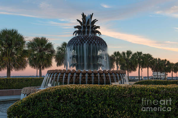 Photograph - Good Morning Charleston by Dale Powell