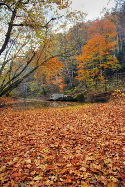 Photograph - Gorge Stream 9 by Sam Davis Johnson