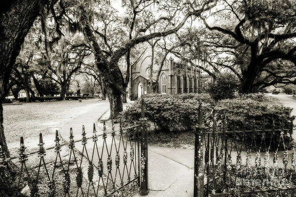 Grace Cathedral Photograph - Grace Episcopal Church - St. Francisville by Scott Pellegrin