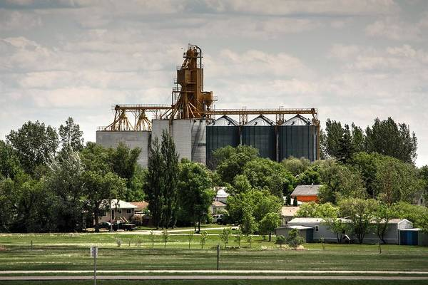 Photograph - Grain Elevator by David Matthews