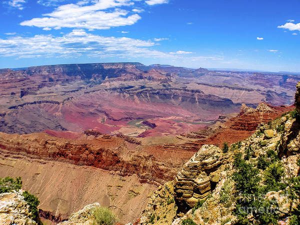 Photograph - Grand Canyon by Benny Marty