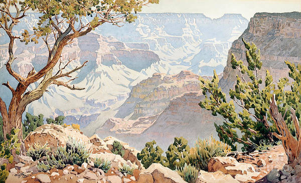 Terrain Painting - Grand Canyon by Gunnar Widforss