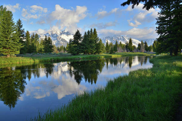 Photograph - Grand Teton Reflection by Ray Mathis