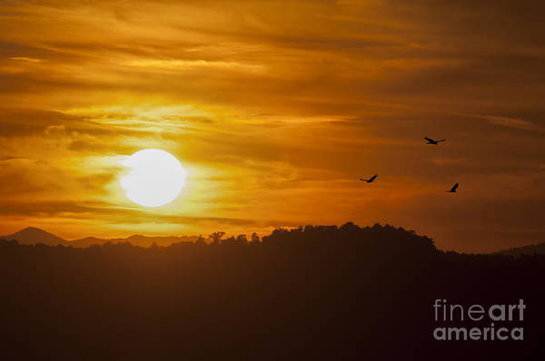 Photograph - Grandview Park At Turkey Spur Overlook At Sunset by Dan Friend