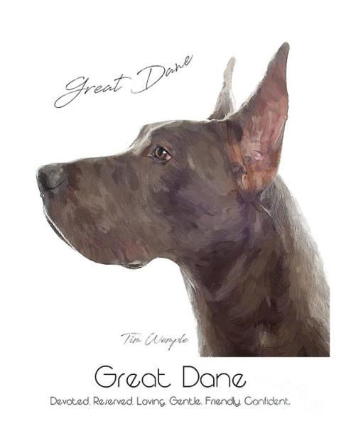 Digital Art - Great Dane Poster by Tim Wemple