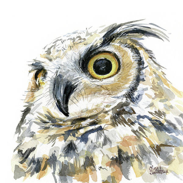 Nocturnal Wall Art - Painting - Great Horned Owl Watercolor by Olga Shvartsur