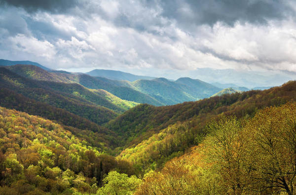 Wall Art - Photograph - Great Smoky Mountains North Carolina Spring Scenic Landscape by Dave Allen