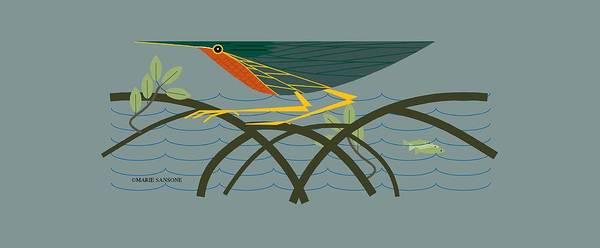 Digital Art - Green Heron by Marie Sansone