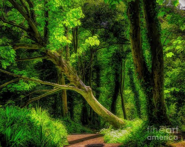 Digital Art - Green Velvet by Edmund Nagele