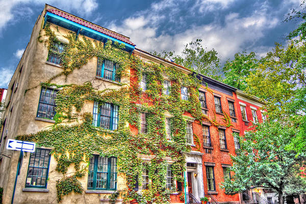 Wall Art - Photograph - Greenwich Village Ivy by Randy Aveille