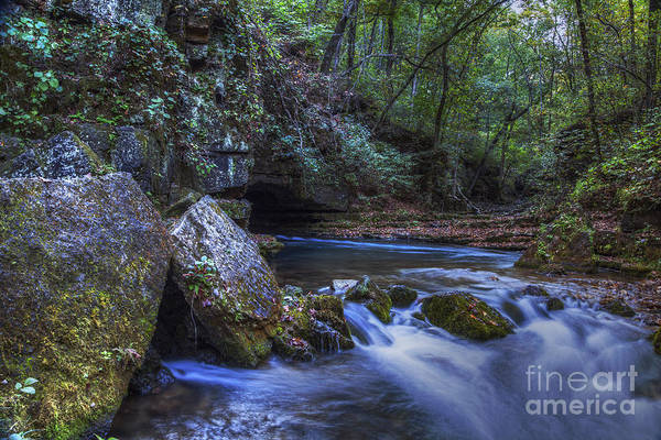 Riverway Photograph - Greer Springs by Larry Braun