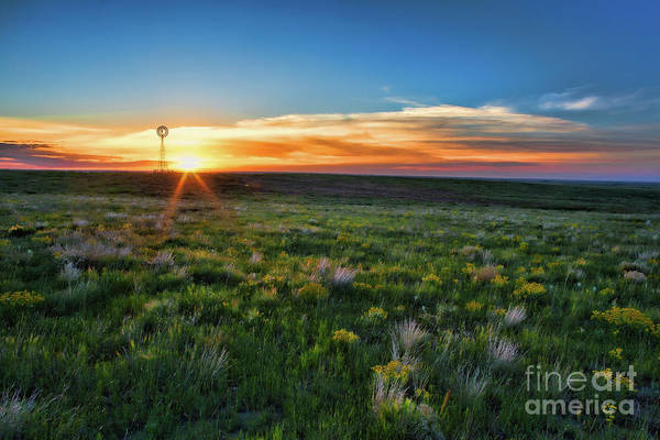 Photograph - Greet The Day by Jim Garrison