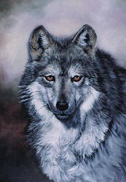 Painting - Grey Wolf by Naomi Dixon