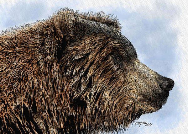 Grizzlies Mixed Media - Grizzly Bear by Kathie Miller