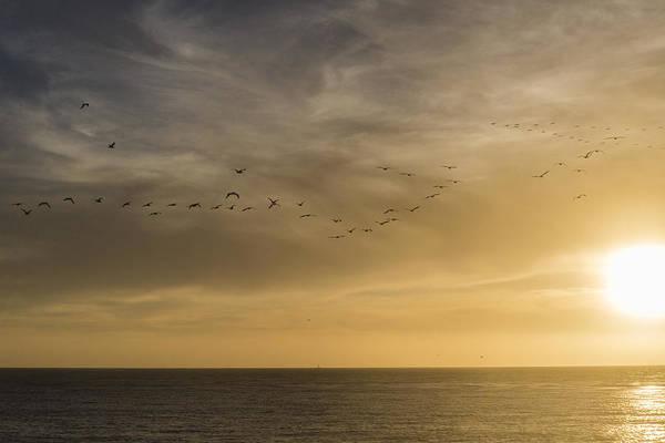 Photograph - Guiding Light by Alex Lapidus