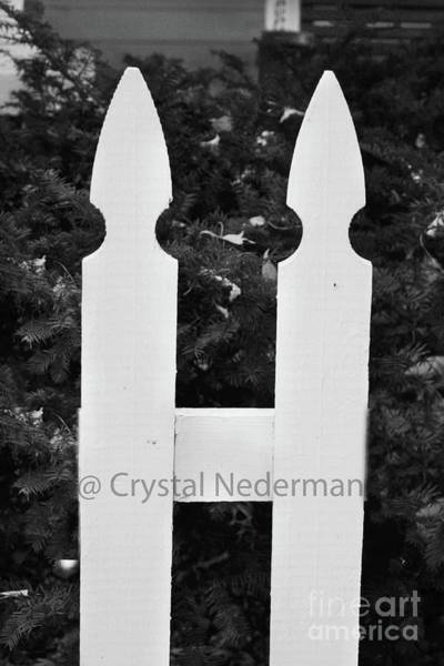 Photograph - H-1 by Crystal Nederman