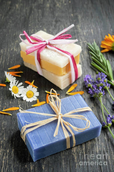 Photograph - Handmade Soaps With Herbs by Elena Elisseeva