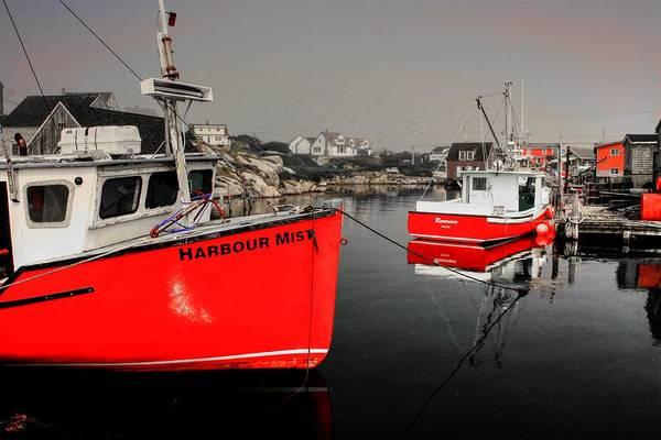 Photograph - Harbour Mist  by David Matthews
