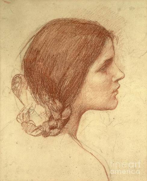 Face Drawing - Head Of A Girl by John William Waterhouse