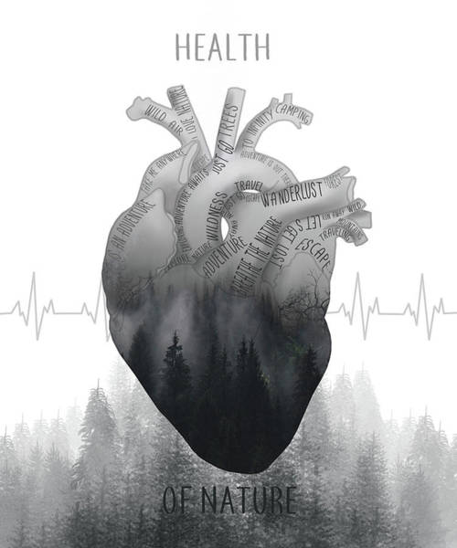 Anatomy Digital Art - Health Of Nature by Bekim Art